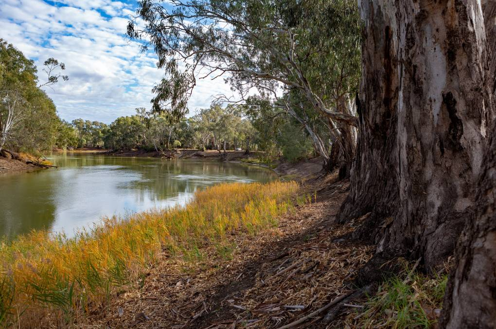 Federal budget leaves Murray-Darling Basin to be fixed with smallest bucket