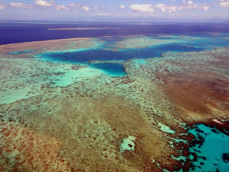 The Great Barrier Reef is now one of 18 world heritage sights deemed to be in a critical condition.