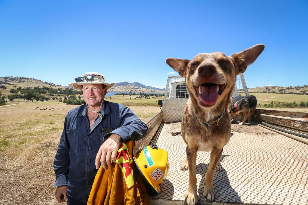 COMMUNITY LEADER: Towong mayor David Wortmann with a faithful friend on his Granya property, reflecting on a tough year and the road ahead. Picture: JAMES WILTSHIRE